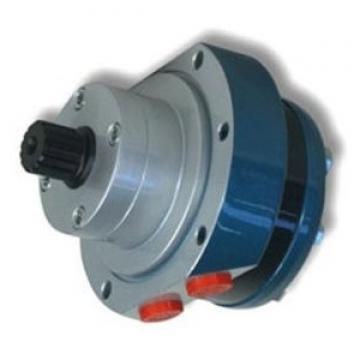 Idraulico Motore 400 Cc / Rev