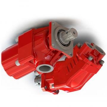 Kompass cilindrata Variabile Pompa A Pistone Idraulica 36CC MANUALE 30-215 BAR