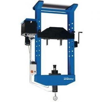 Pressa idraulica con pompa manuale e cilindro mobile Metalfkaft WPP 30