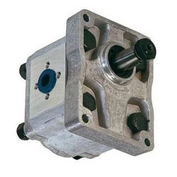 80005413 FIALE DANFOSS doppia pompa ad ingranaggi DE2R-23SH-BB-104-17-N104-NNN-000-AW-A