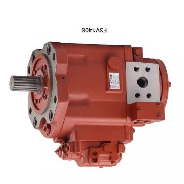 Hydraulic Pump Spare Parts Repair Kit for Rexroth AP2D12 Bobcat 331