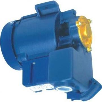 Hpi a5095101 Pompa Idraulica