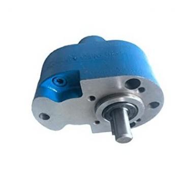 Rexroth-Sigma 1PF2G223/008RA01MS Pompa a Ingranaggi