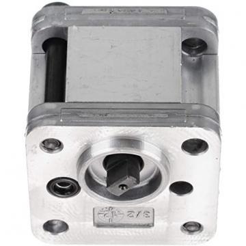 Marzocchi K1PS9.2G Pompa a Ingranaggi 5,8 Ccm , 190 BAR, SX
