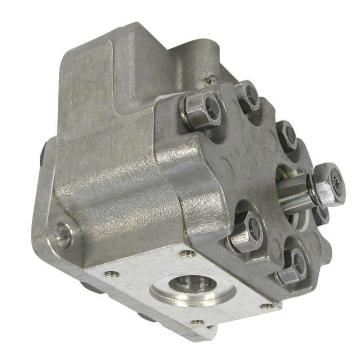 TANDEM pompa idraulica per David Brown Trattore 1200 1210 1212 1390 1490 1394 1494