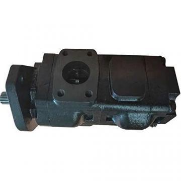 Originale Parker / Jcb Pompa Idraulica 332/T4833 Prodotto IN Eu
