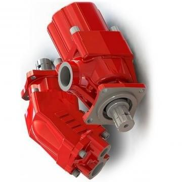 Jcb Pompa Idraulica 20/908100 per 2CX, Loadall 525