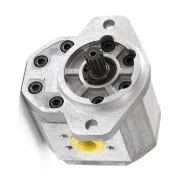 Originale Parker / Jcb Pompa Idraulica 332/E6671 Prodotto IN Eu