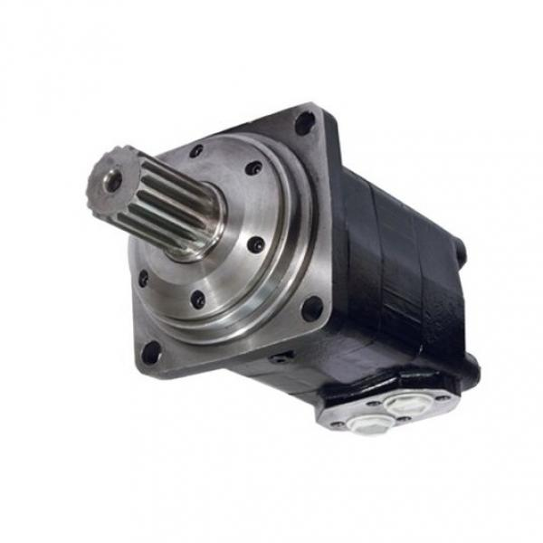 Senza Marca Idraulico Motore Ffpmm Serie #3 image