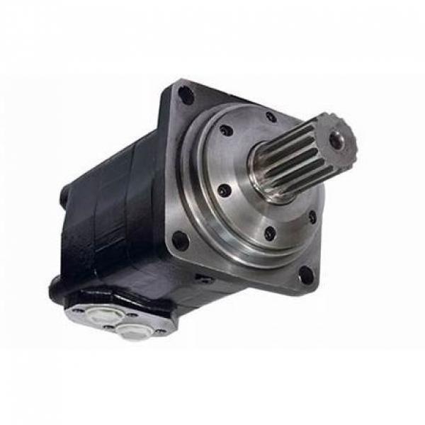 Senza Marca Idraulico Motore Ffpmm Serie #1 image
