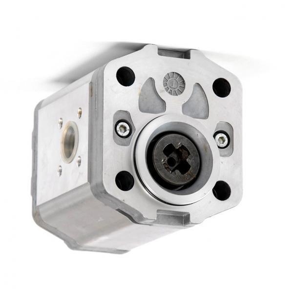 Flowfit Idraulico Pompa ad Ingranaggi, Standard di Gruppo 2, 4 BULLONE FLANGIA UE #3 image