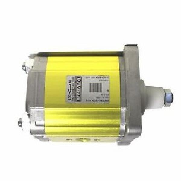 10A (C) 3,15X053G CAPRONI idraulica pompa ad ingranaggi STADIO DI GRUPPO 2 Wanda Casappa MOTOR #1 image