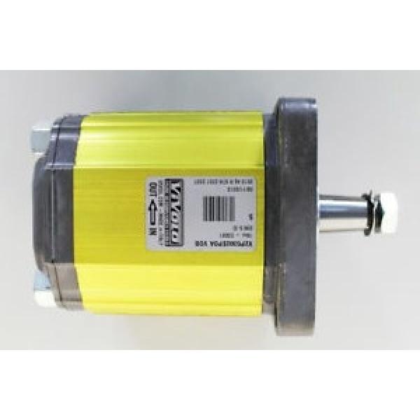 Flowfit Idraulico Pompa ad Ingranaggi, Standard di Gruppo 2, 4 BULLONE FLANGIA UE #2 image