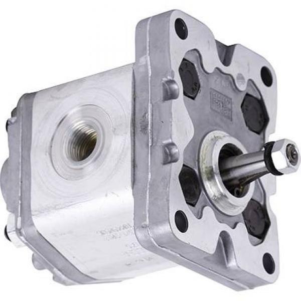 Pompa idraulica pneumatica per sollevatore SOGI SL-150 #2 image