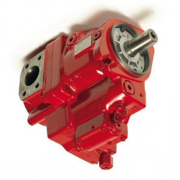 6671521 Nuovo Caricatore idraulico Doppio Pompa ad Ingranaggi 11 Albero Scanalato realizzato per adattarsi Bobcat #1 image