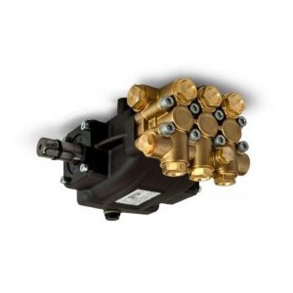 Pompa idraulica comando pneumatico pedale Fervi 0664 #2 image