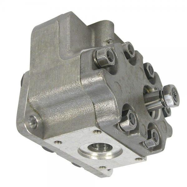 TANDEM pompa idraulica per David Brown Trattore 1200 1210 1212 1390 1490 1394 1494 #1 image
