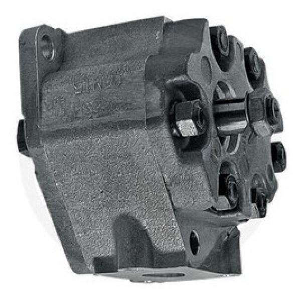 TANDEM pompa idraulica per David Brown Trattore 1200 1210 1212 1390 1490 1394 1494 #3 image
