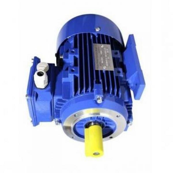 Pompa Idraulica Per Jcb 2CX, 520, 525, 530, 210S, 921, 925, 930, 940 - 20/202900 #1 image