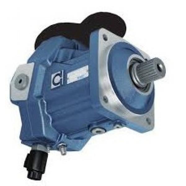 TANDEM pompa idraulica per David Brown Trattore 1200 1210 1212 1390 1490 1394 1494 #2 image